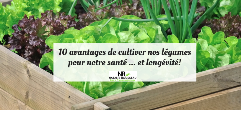 Cultiver ses légumes améliore santé… et longévité