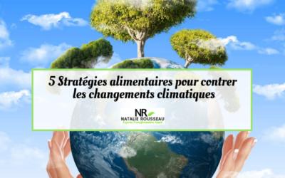 5 stratégies pour contrer les changements climatiques
